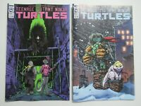 IDW Comics Teenage Mutant Ninja Turtles #102 TMNT Cover A & B