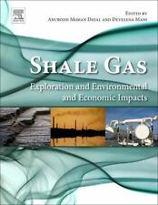 SHALE GAS - DAYAL, ANURODH MOHAN (EDT)/ MANI, DEVLEENA (EDT) - NEW PAPERBACK BOO