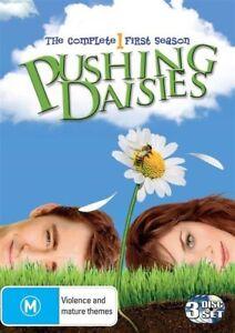 Pushing Daisies : Season 1 (DVD, 2009, 3-Disc Set)