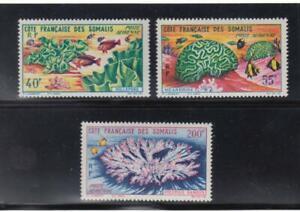 French Somali Coast: 1963 Corals MNH