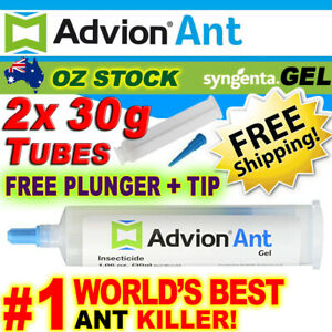 Genuine Advion Ant Gel Syngenta 2x 30g Ant Killer Bait Dupont FREE Plunger/Tip!