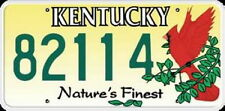 Licence Plate-Kentucky License Plate USA Number Plate Deco, OVP!!!