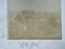 RARE 1899 CABINET PHOTO COW DRIVEN CART WAGON BLACK MAN CAMP MACKENZIE GEORGIA