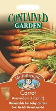 Mr Fothergills - Vegetable - Carrot Amsterdam 3 Sprint - 500 Seeds