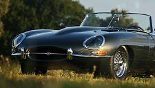 1 Carreras deportivo Jaguar 24 LEMAN Exótico RARO Concepto 18 Carousel Verde 12