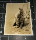"1930s Sailor MASCOT Chow Chow Dog ""Pal"" Navy Ship Man Vintage Snapshot PHOTO"