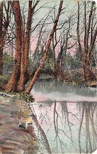 Greensboro North Carolina 1909 Postcard Trees Creek Scene