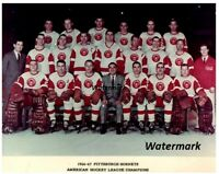 AHL 1966 - 67 Calder Cup Champs Pittsburgh Hornets Team Picture 8 X 10 Photo