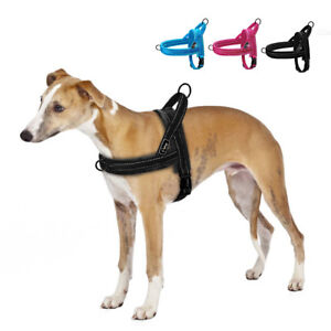 No Pull Front Leading Pet Dog Harness Adjustable Reflective Padded Vest XS S M L
