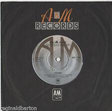 "Strawbs - Hero and Heroine 7"" Single 1974"
