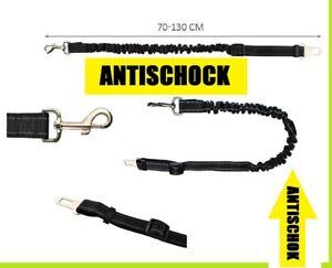 Cintura cinghia di sicurezza auto per Cane Guinzaglio per collare pettorina dog