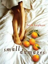 Small Damages by Beth Kephart (2012, Hardcover) NEW