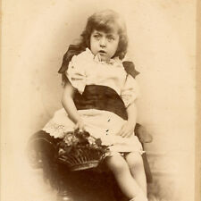 1880s LITTLE GIRL & BASKET OF FLOWERS CABINET CARD PHOTO LONDON FASHION ANTIQUE