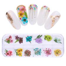 12 Colors/Box Dry Flowers Nail Art 3D Decoration Flower Leaf Manicure Stickers