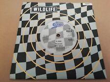 "WILDLIFE * RAT RACE / BUCK-SHE * 7"" ROCK & ROLL SINGLE EXCELLENT 1990"