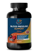 Blood Pressure Support Cardiovascular Health Dietary Supplement (1 Bottle)