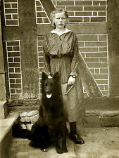 BELGIAN SHEPHERD DOG AND GIRL GREAT GREETINGS NOTE CARD