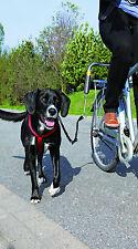 Trixie 1287 Juego de Motorista De Luxe Distanciador €, para perro