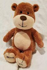 Hallmark's Record a Name Singing Teddy Bear Plush NWT