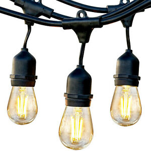 Brightech Ambience Pro Edison Black LED Waterproof Outdoor String Lights, 48 Ft.