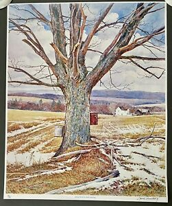 """1970's David Armstrong Vintage Litho Print Signed 10/75 """"Spring Winds"""" 26 by 21"""""""
