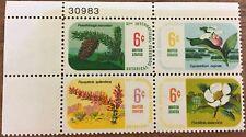 4 block 1969 Botanical Congress 6¢ postage stamps MNH Scott #1376-11379