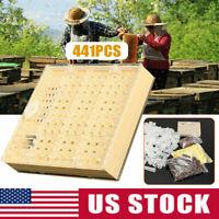 441PCS Beekeeping Rearing Cup Kit Queen Bee Cages Beekeeper Equipment Tools US