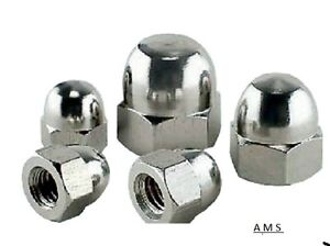 M16 Stainless Steel Dome nuts  2 pack