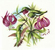 Ceramic Decals Hummingbird Pink/Purple Lily Flower