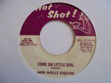 "New ListingThe More Wells Come On Little Girl Hot Shot Reggae 7"" Hear"