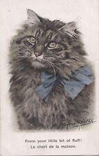 B80574 from your little bit of fluff le cheri de la maison cat  front/back image