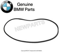 BMW E53 X5 00-06 Front Door Seal Driver Left or Passenger Right GENUINE