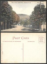 Old Postcard - Saratoga Springs, New York - Entrance to Yaddo Rose Garden