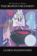 The Black Cauldron (Hardback or Cased Book)
