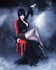 Elvira Mistress of the Dark - Unsigned 8x10 Photo