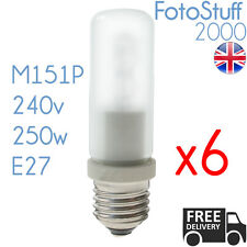 BW 1024 64480 250w Frosted Pearl Modelling Bulb ES Bowens Interfit M151p 64480 Each