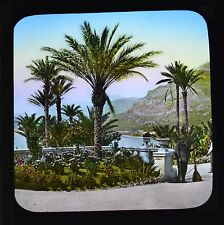 Magic Lantern Slide Colour Mediterranean Monaco Monte Carlo Gardens