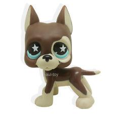 Littlest Pet Shop RARE Great Dane Dog Puppy Chocolate STAR Blue Eyes LPS #817