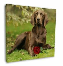 """German Shorthaired Pointer with Red Rose 12""""x12"""" Wall Art Canvas D, AD-GSP1R-C12"""