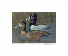 RW74 2007 FEDERAL DUCK STAMP PRINT RING NECKED DUCK by Richard Clifton