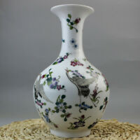 Chinese old porcelain Pastel Flower and bird painting luminous vase
