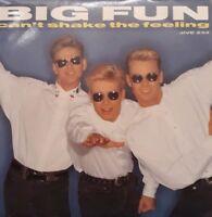 """Big Fun-Can't Shake The Feeling/Don't Say It's Over 7"""" Single.1989 JIVE 234."""