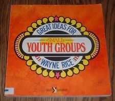 Great Ideas for Small Youth Groups by Wayne Rice (1986, Paperback)