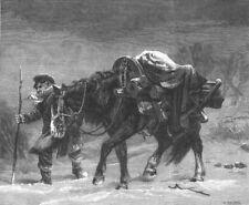 HORSES. Winter. Fine Art, antique print, 1867