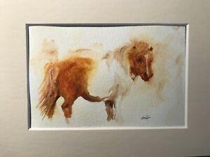 Shetland Pony Watercolour Painting. by   Stef Ottevanger