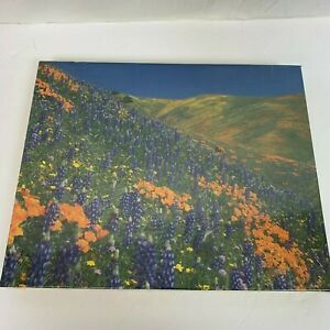 NEW SEALED Cape Shore Inc WILDFLOWERS Jigsaw Puzzle 500 Pieces Made in USA