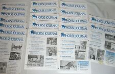 Lot Of 19 Michael Plumb'S Horse Journal Magazines Dated 2004-2005
