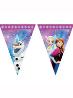 7.5ft x Disney Frozen Northern Lights Birthday Party Flag Bunting Decoration