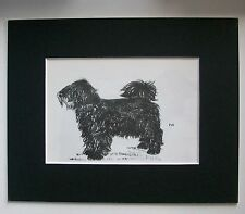 Puli Dog Print Gladys Emerson Cook Hungary Cords Bookplate 1962 8x10 Matted Cute