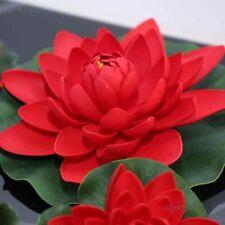 10 Seeds Bali Red Lotus Rare Nelumbo Plant Seeds Aquatic plants Water Lilly